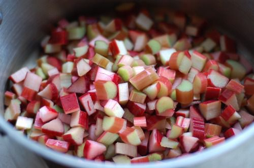 20110525-153157-raspberry-rhubarb-jam-2.jpg