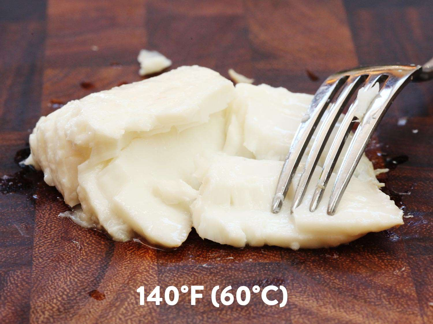 A piece of sous vide halibut cooked to 140 degrees F. It's being flaked with a fork.