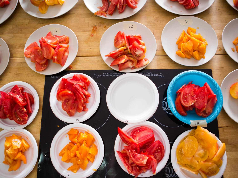 20140922-tomato-testing-part-3-vicky-wasik-6.jpg