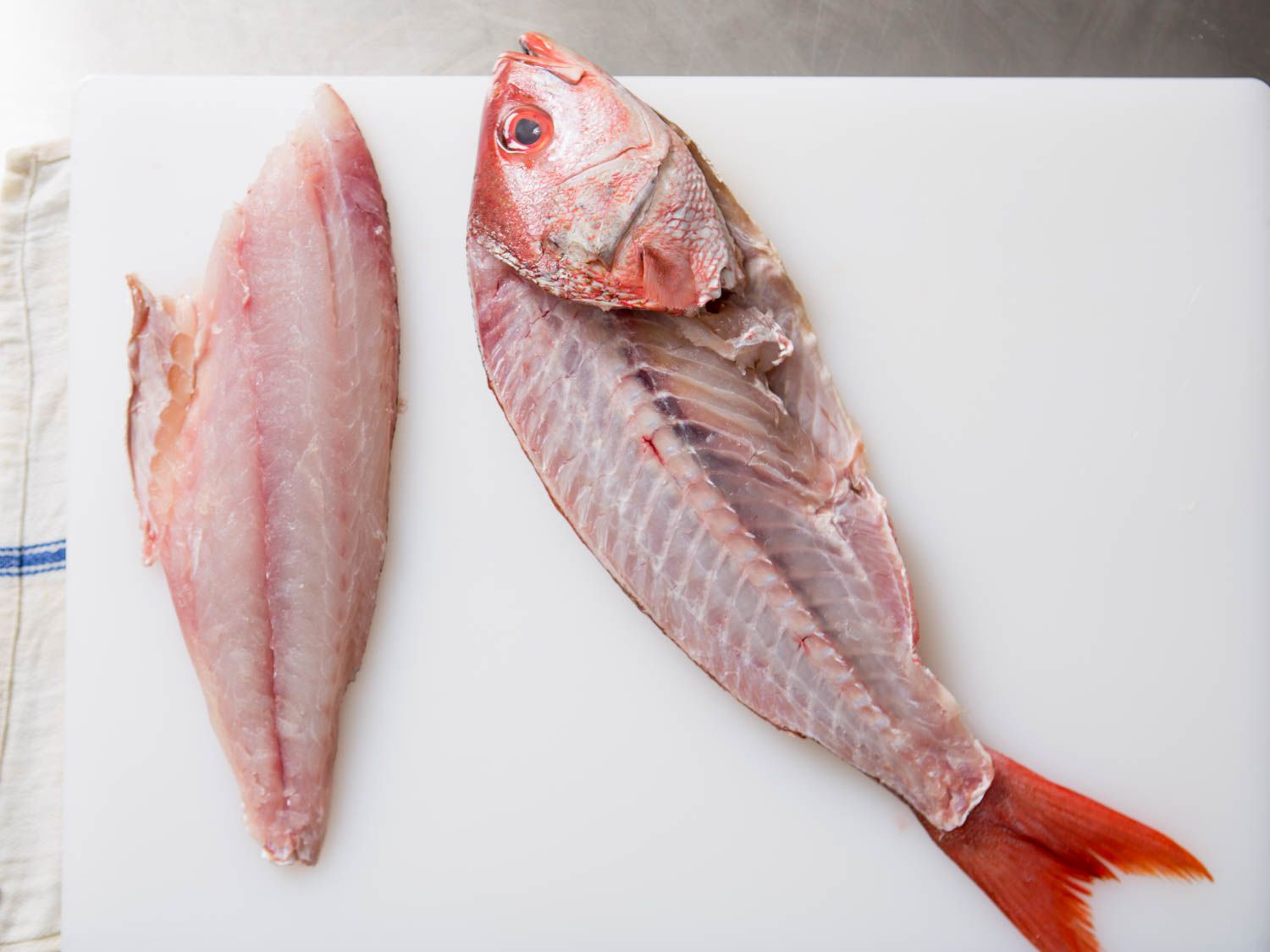 20150922-how-to-fillet-fish-11.jpg