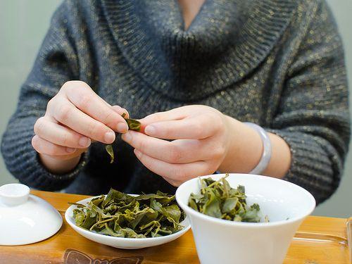 193518-tea-tasting-ceremony-leaves.jpg