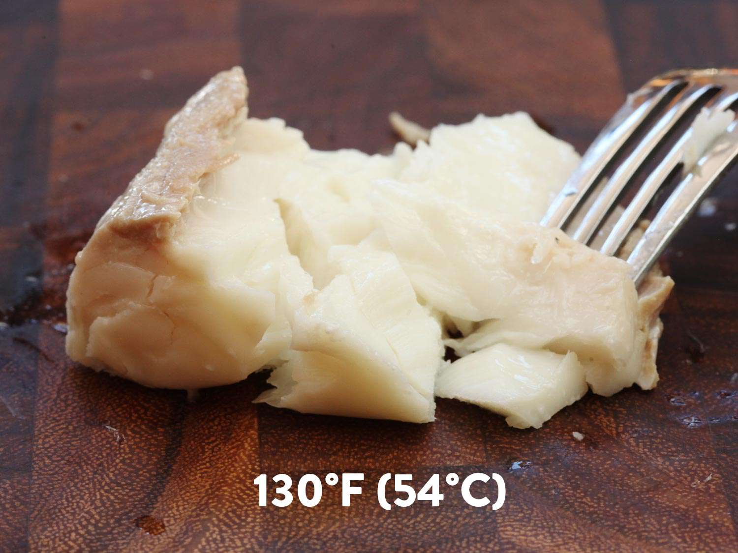 A piece of sous vide halibut cooked to 130 degrees F. It's being flaked with a fork.