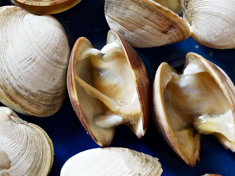 20140703-ideas-in-food-clam-sauce-CryoShuckedClams.jpg