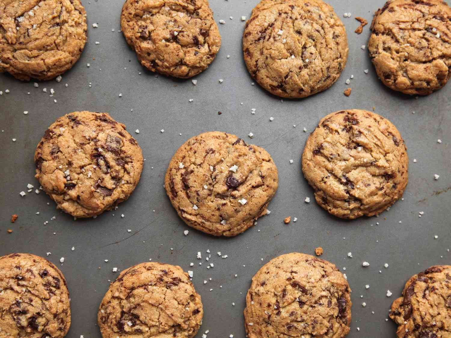 Array of chocolate chip cookies on a grey background.