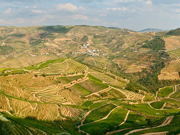 Thumbnail image for portugal douro valley
