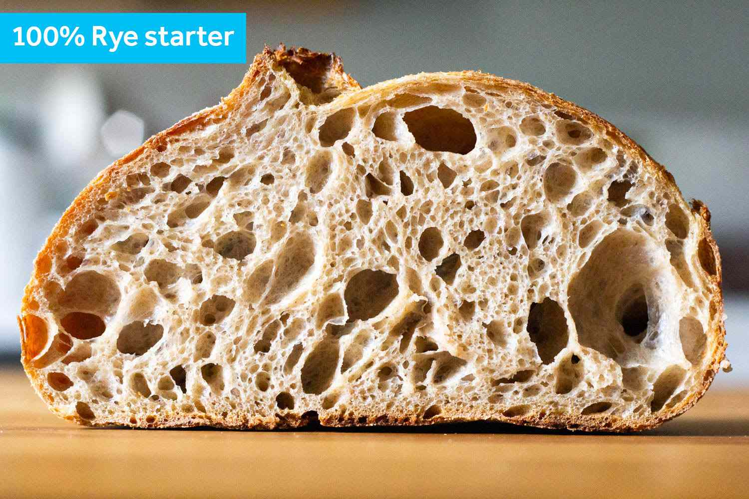A cross section of the 100% rye starter
