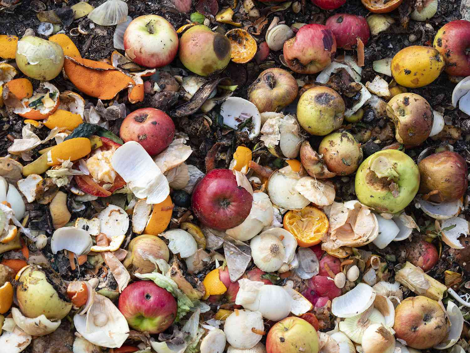 apples, garlic, onions, and other food waste and scraps
