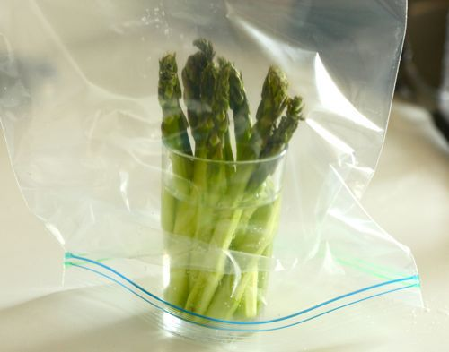 20110525-food-lab-asparagus-09.jpg