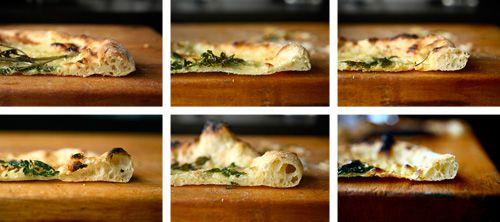 20100923-pizza-lab-fermentation-crusts-days.jpg