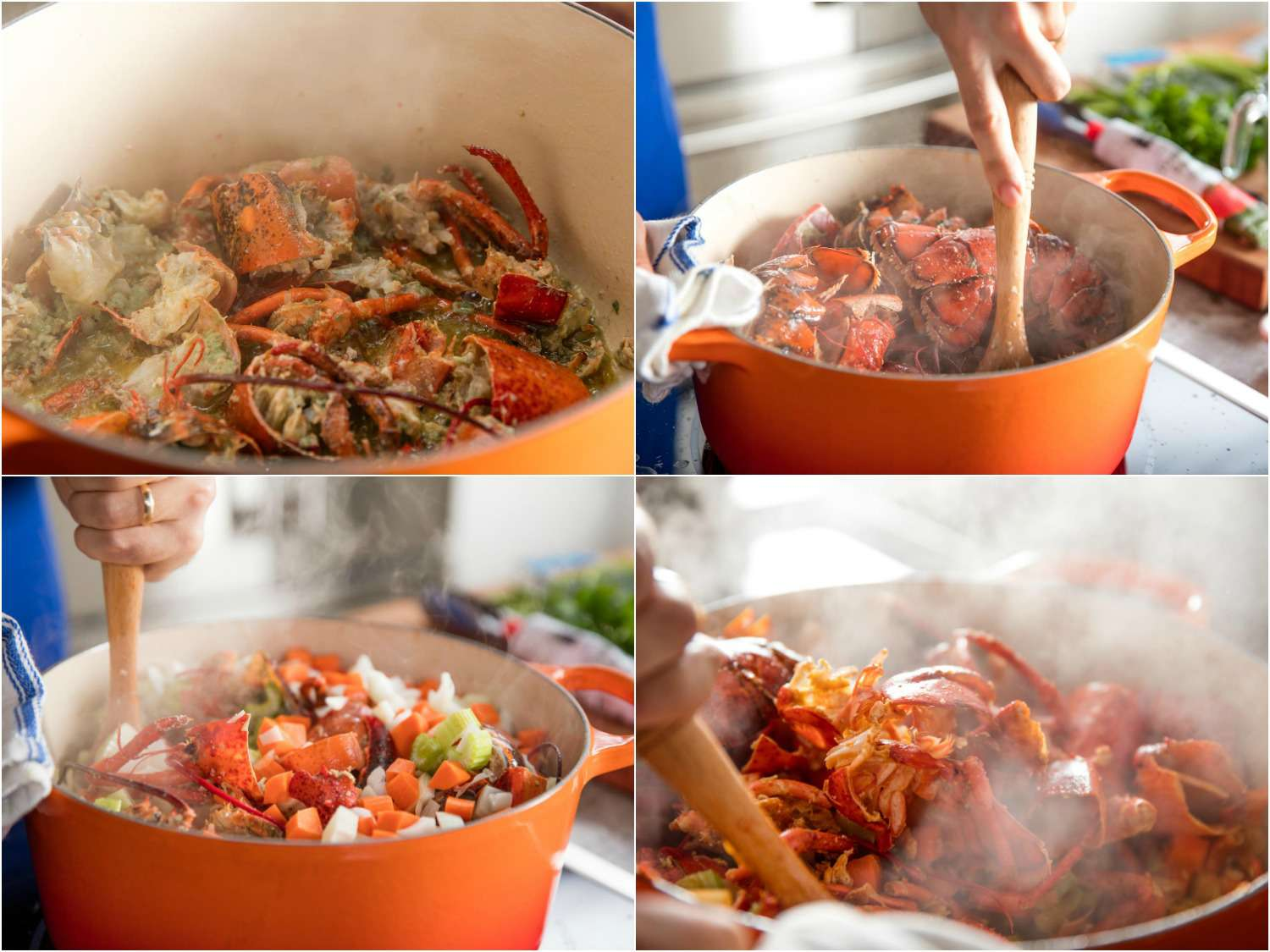 20170407-lobster-bisque-vicky-wasik-cooking-shells-aromatics.jpg