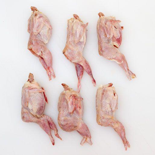 20120724-nasty-bits-raw-quail-square.jpg