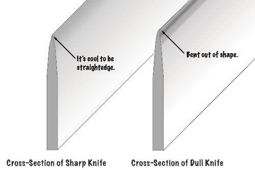 20100429-knife-sharpening-diagram.jpg