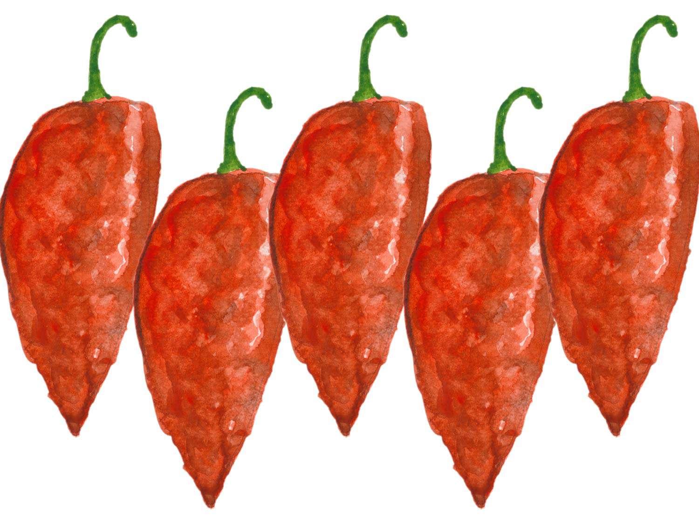 ghost-pepper.jpg