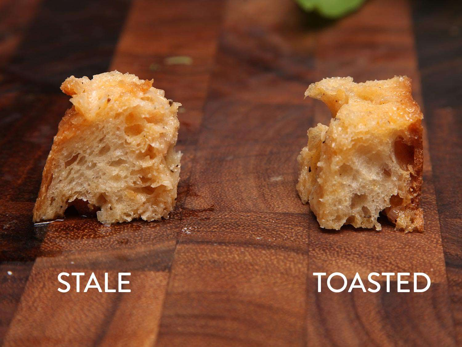 A comparison of two cubes of crusty bread, one stale and one toasted, showing how they absorb moisture differently