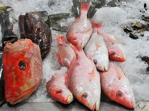 20130107-236094-mercado-san-juan-fish.jpg
