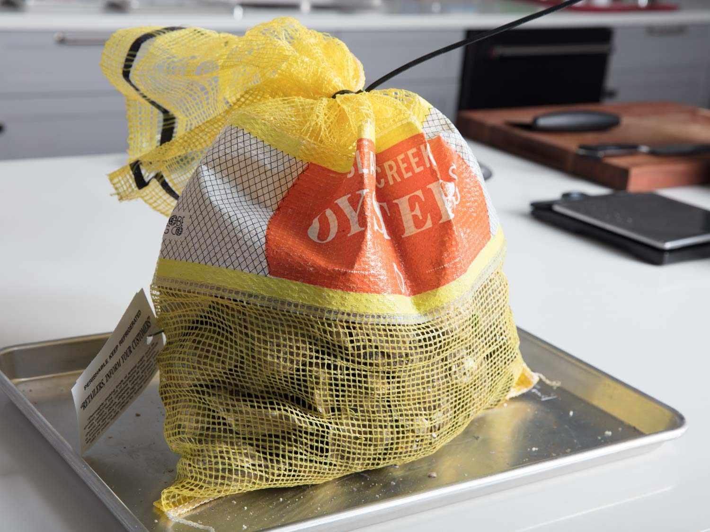 Bag of Island Creek oysters