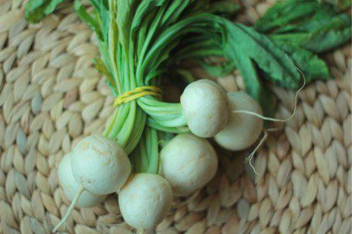 05142012-206332-harukei-turnips.jpg