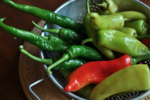20111021-176169-mixed-hot-peppers.jpg