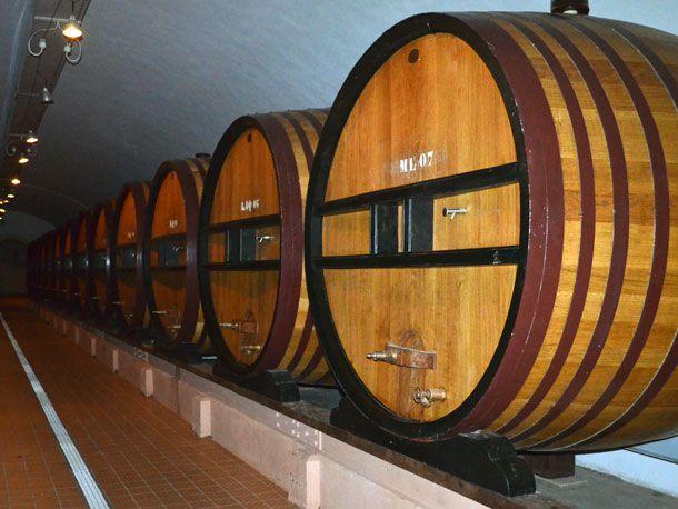 barrels of reserve wines