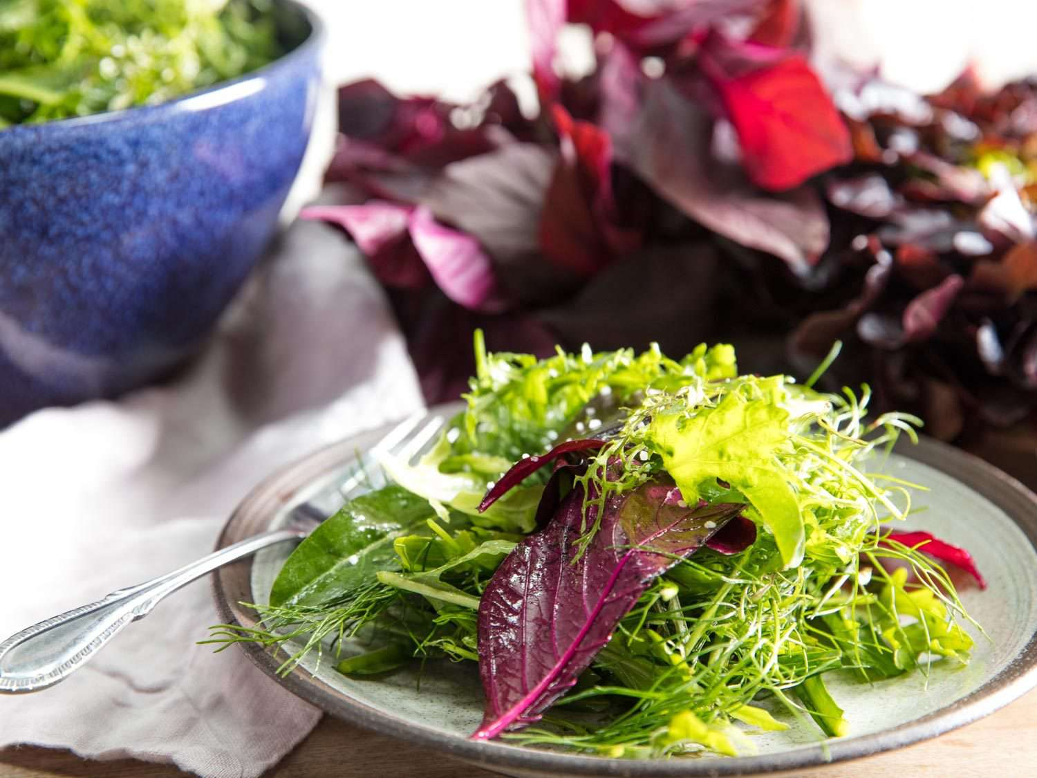 Ceramic plate of Roman-Inspired Mixed-Green Salad (Misticanza alla Romana) with salad greens in the background