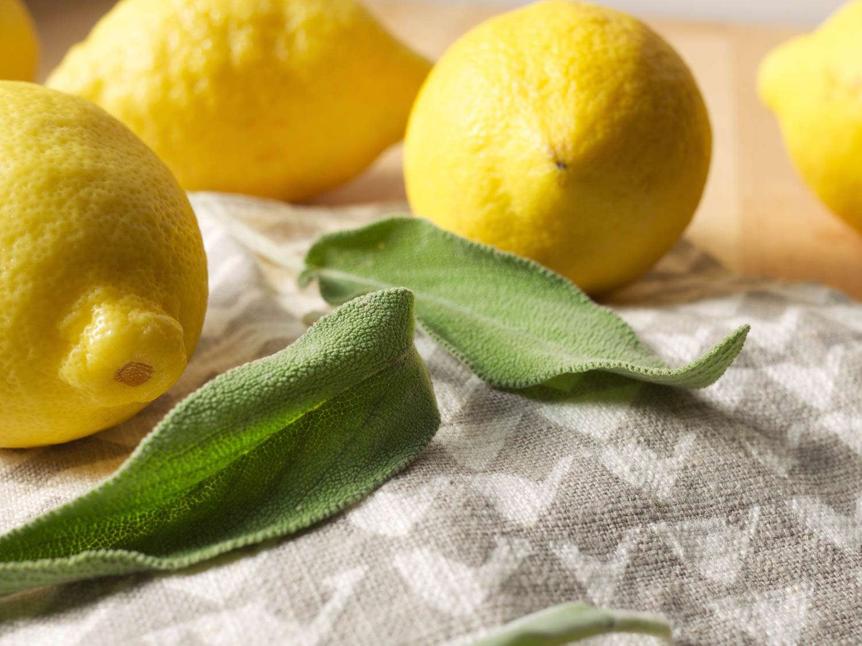 20150908-SavoryLemonSparkler-lemonsage-Elana-Lepkowski.jpg