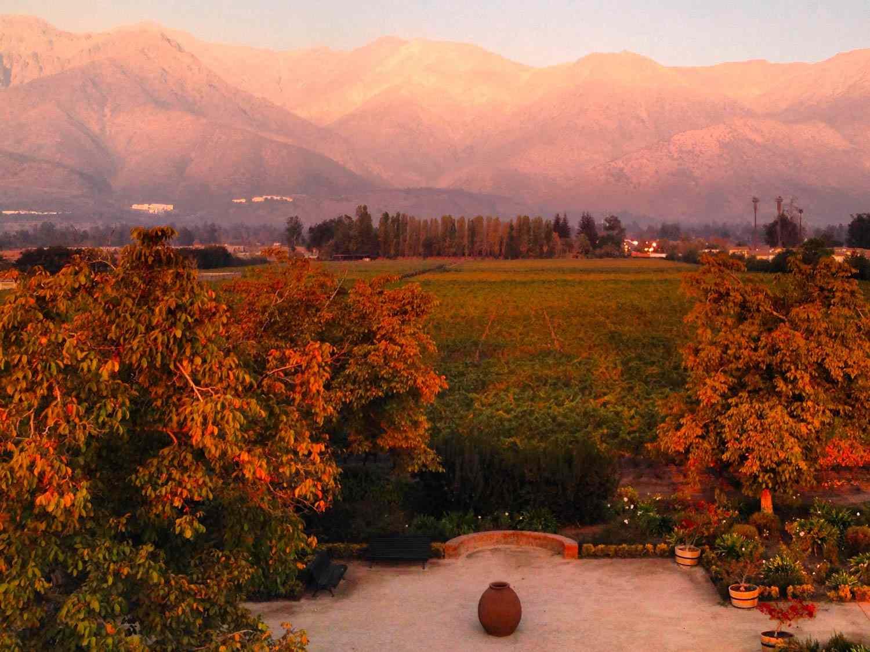 20150625-chilean-wine-chile-maipo-andes-credit-jake-pippin.jpg