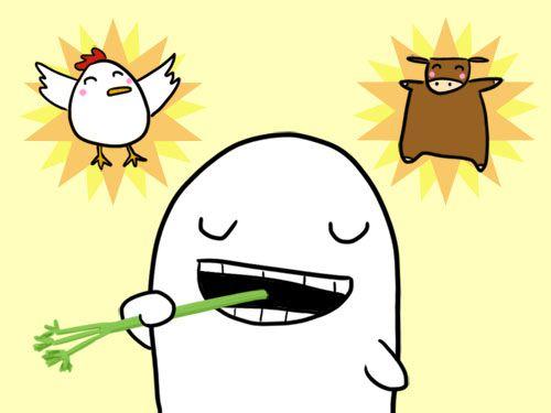 20120113-vegan-experience.jpg
