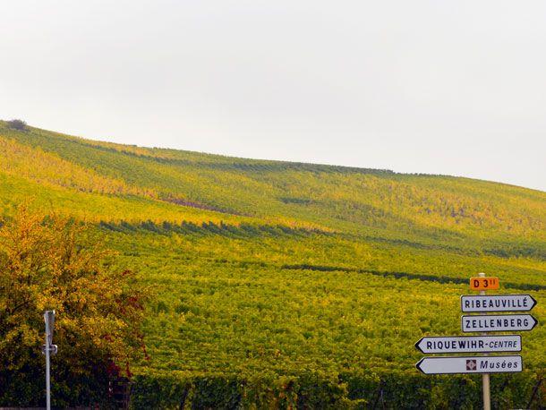Alsatian Wine Route