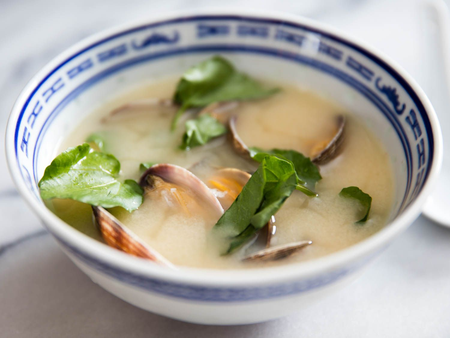 20160302-miso-soups-feature-vicky-wasik-7-2.jpg