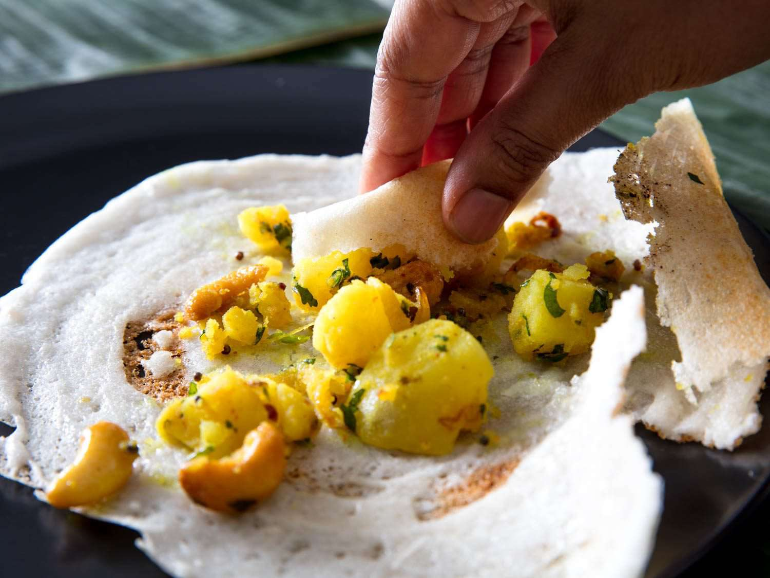 A hand picking up potato filling with a portion of dosa