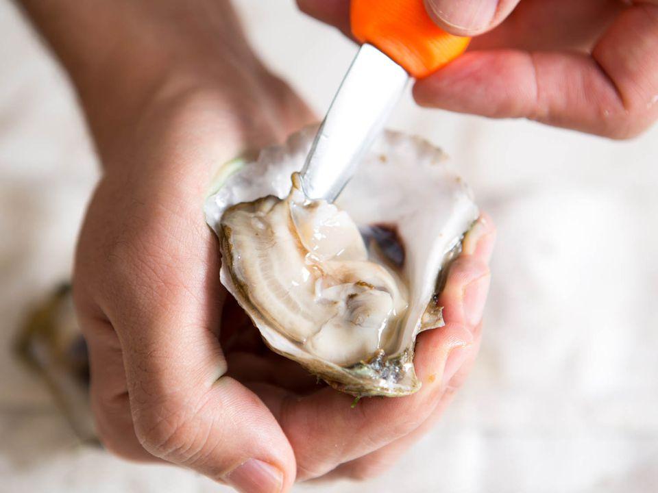 20151102-oyster-shucking-vicky-wasik-10.jpg
