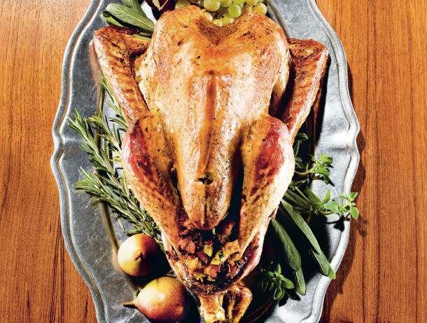 Thanksgiving Wild Turkey