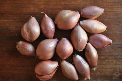 20120213-192761-two-pounds-shallots.jpg