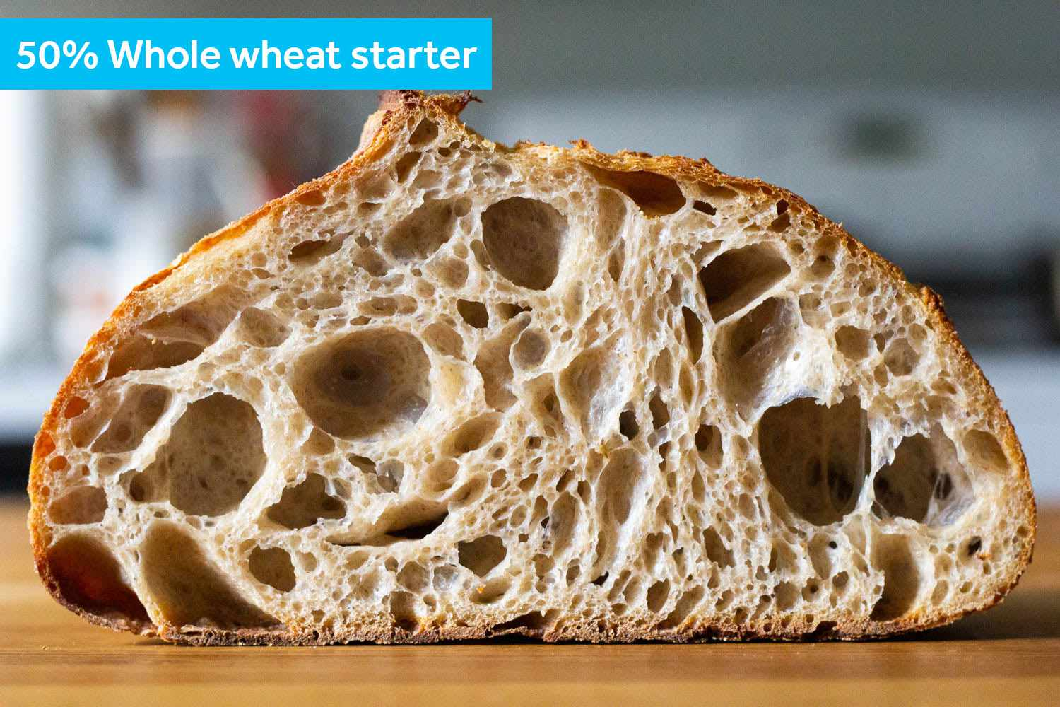 A cross section of the 50-50 whole wheat starter loaf