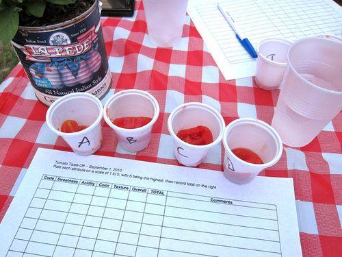 20100914-tomato-tasting-score-sheet.jpg
