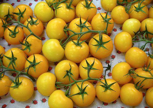20090927-yellowtomatosoup.jpg