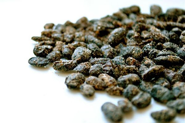 20101221-129671-fermented-black-beans-lead.jpg