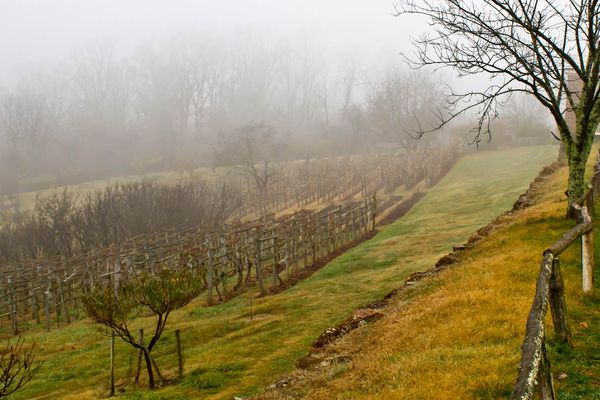 20141007-best-southern-cider-jefferson-orchard-christopher-lehault.jpg