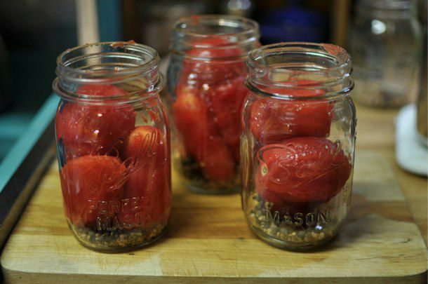 20110826-167958-pickled-red-tomatoes-in-process.jpg