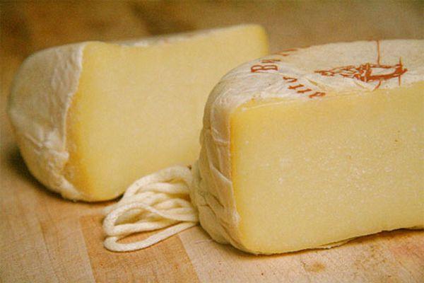 20090423-gina-cheese.jpg