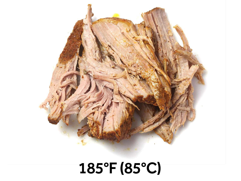20160101-carnitas-cochinita-pibil-sous-vide-recipe25.jpg