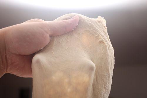 20110616-no-knead-dough-14.jpg
