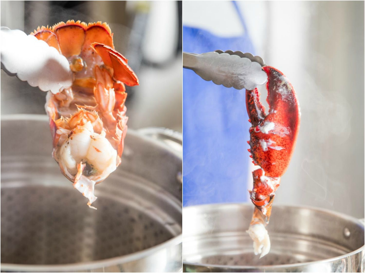 20170407-lobster-bisque-vicky-wasik-steaming-claws-tail.jpg