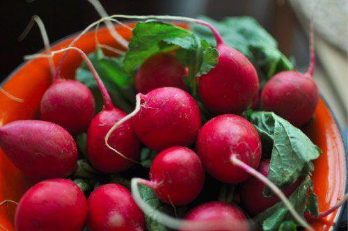 06022012-208968-whole-radishes.jpg
