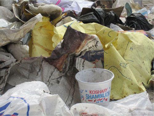 20110210-koshary-4.jpg