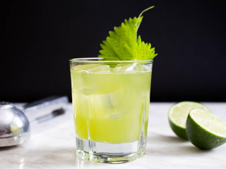 20160613-nonalcholic-summer-drink-recipes-roundup-06.jpg