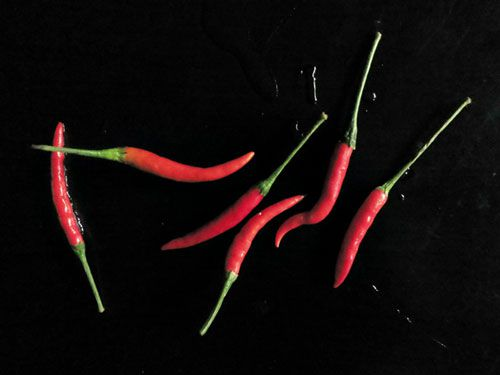 20120202-1911120-tom-yam-kung-chilies-2.jpg