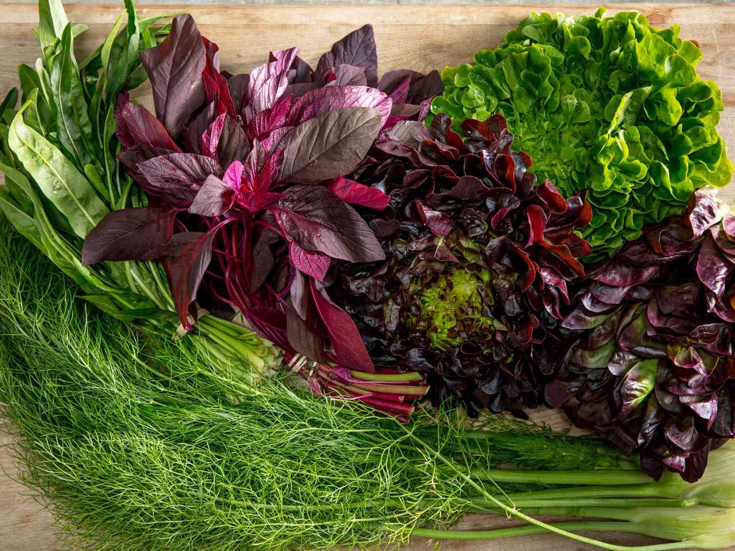 Selection of greens and lettuces on a cutting board, including fennel fronds, red and green leaf lettuce, and mustard greens.