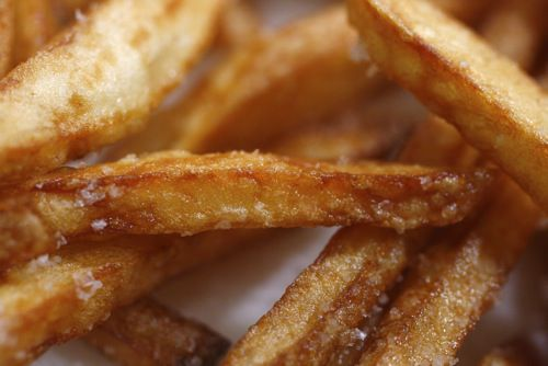 20100115-french-fry-perfect-fries1.jpg