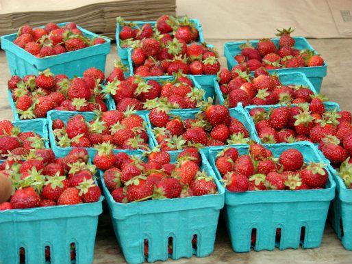 20120801berries.jpg
